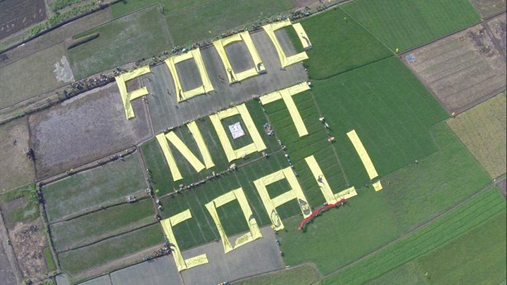 food not coal
