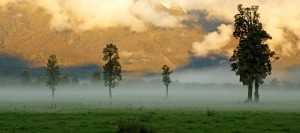 Climate Policy in Agriculture:  Questioning New Zealand's '100% pure' Image